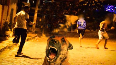 街头恶搞:用音箱播放狗叫声吓唬人,路人以为有恶犬吓得撒腿就跑