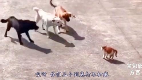 四川爆笑方言配音:快点,我赶时间,你们三个一起上吧