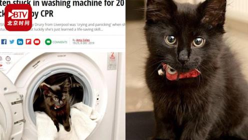 还剩8条命!英国小猫洗衣机内被洗20分钟 主人为其心肺复苏奇迹救活