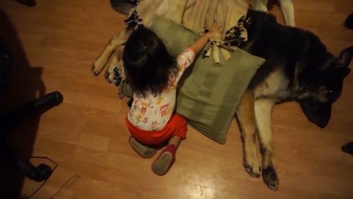 狗狗要睡觉,小宝宝熟练的给狗狗盖上了被子,然后自己也躺在旁边