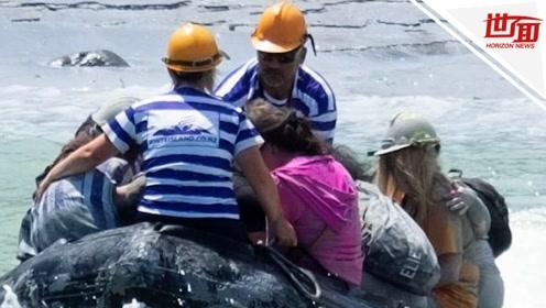新西兰火山喷发后立刻返航 游船船长独自勇救20余人
