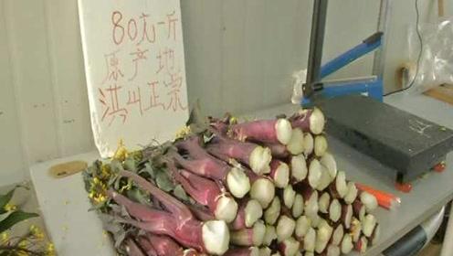 500元两根的菜薹!洪山菜薹上市每斤50到500元:物以稀为贵