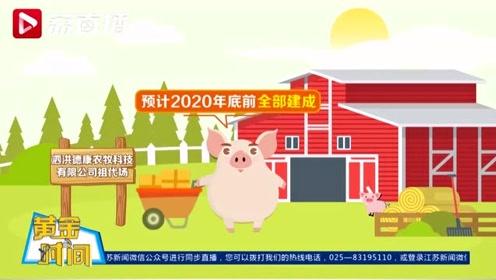 黄金时间丨猪肉供应量太少不够吃?江苏多措并举让生猪数量涨涨涨!
