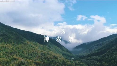 我们登上湖北的最高点 遇见最壮阔的云海