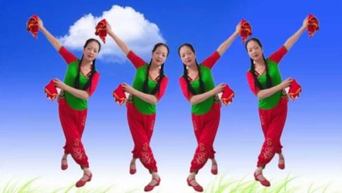 广场舞《荞麦花》网红手绢舞,喜庆又欢快