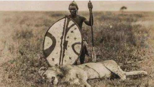 """为啥凶猛的狮子,遇上马赛人也只有""""认怂""""的份?镜头记录全过程"""