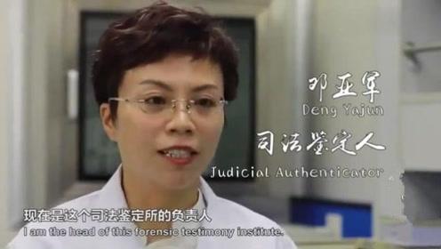 专访亲子鉴定师:我做了十万例亲子鉴定,各种稀奇古怪的案子都有