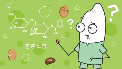 同学们,为什么误食枇杷、桃、杏的种仁会中毒?