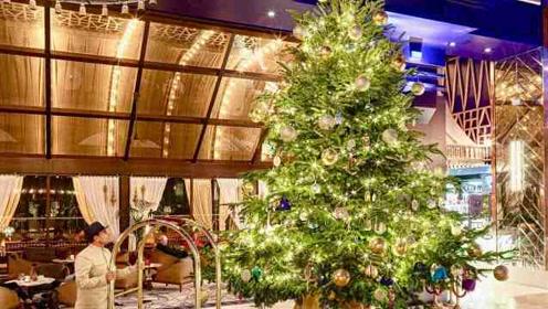 史上最贵圣诞树价值1500万破吉尼斯记录,挂满稀有钻石和珠宝