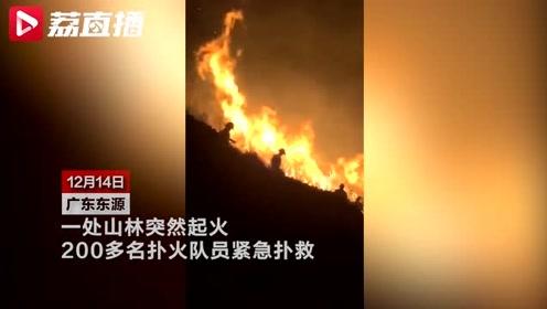 情侣放烟花拍照引发山火:10亩山林被烧