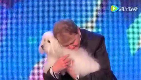 全球第一条会说话的狗狗