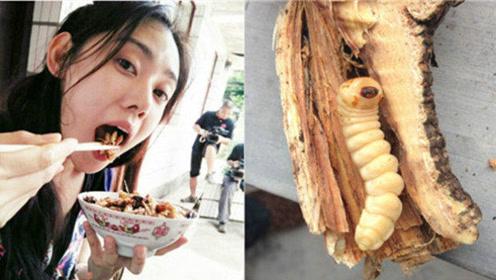 吃虫子!盘点端午节奇葩习俗