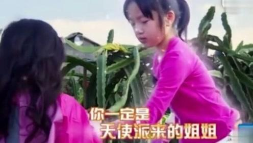 neinei化身暖心小天使助力陈小春,吴尊偷偷乐到不行了!