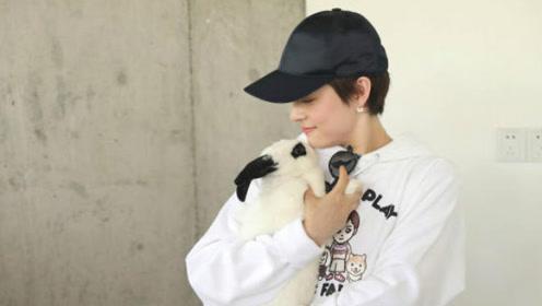 孙俪家的孩子都爱动物 等等9月就是小学生了