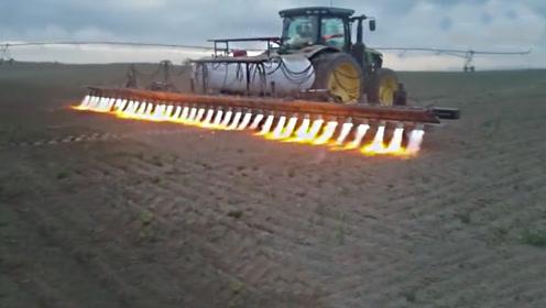 最霸气除草,开喷火车一路烧过去,30个喷火口,连根除草还能增肥