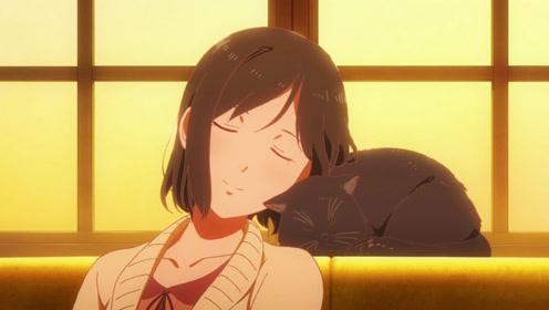 她与她的猫,如果有来世,我还愿再做一只猫陪伴着你