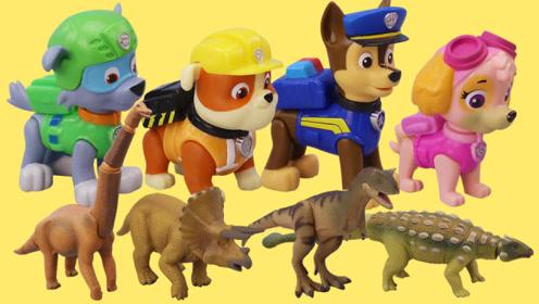 汪汪队与超级可爱的恐龙惊喜盒玩