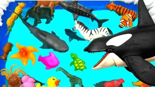 为孩子们学习野生动物玩具的颜色