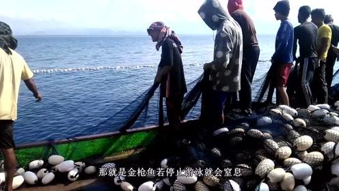 渔民们撒下超级大网,忙活了一整天,收网的时候愣住了