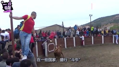 公牛斗牛场发狂撞人,随后看到喂养主人,公牛反应出乎意料(1)