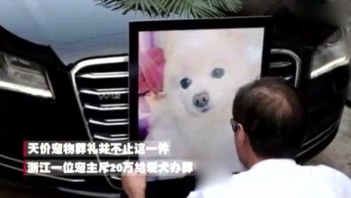 阿姨花20万办一场宠物葬礼:为宠物体面送行