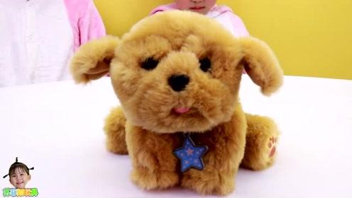 《苏菲娅玩具》艾米儿给玩具狗狗取了什么名字呢?