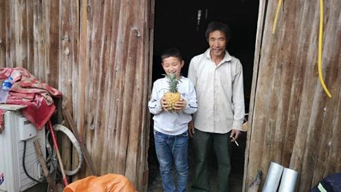 """云南瑶山乡,生长着一大片""""菠萝的海"""""""