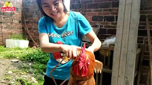 老婆被大鸡吧愹aiy.�_农村里饲养了十几年的大鸡头,都成精了,农村姑娘要怎么才能对付它