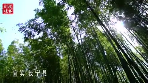 一分钟速览十大天府旅游名县美景