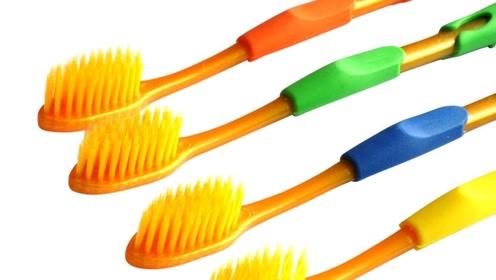 用牙刷自制剥瓜子神器 只要三步轻松开瓜子