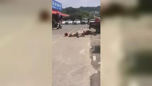 白马受惊街道狂奔 撞伤路人被击毙