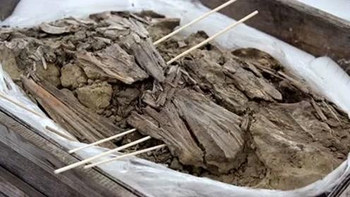 """俄罗斯发现5000年前衣物,它是用""""鸟嘴""""制作而成的!"""