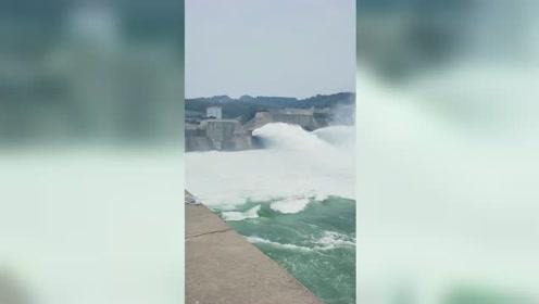 小浪底开闸泄洪迎飞瀑 游客堵出十几公里