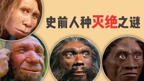 史前人种为何纷纷灭绝?智人为何独霸天下?