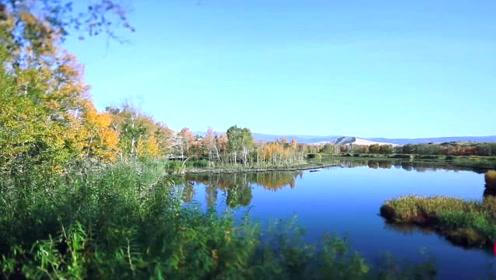 鸣沙、湖泊、荷花、桦树…这处边境沙漠,才是新疆真正的绝色天堂