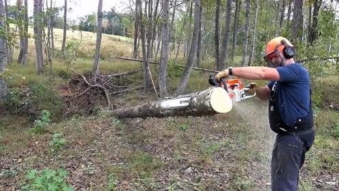 老外发明新型锯木机,200元一个,木屑不乱飞,在农村很实用!