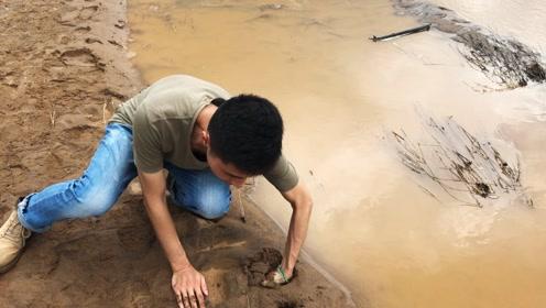 发现洞口有爬行的痕迹,不料越挖越深,挖开后小伙高兴坏了