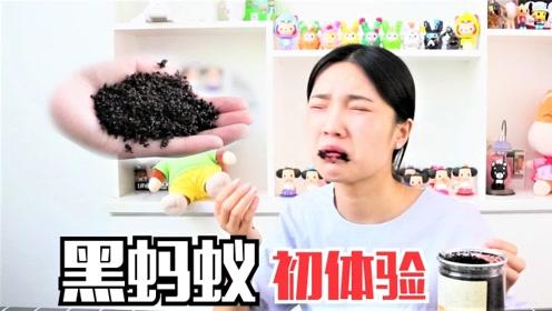 """妹子挑战超恐怖的""""黑蚂蚁"""",一口气吃上万只蚂蚁,结果会怎样?"""