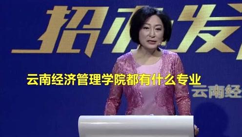 云南经济管理学院都有什么专业
