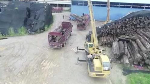 一锅端!深山小村暗藏10万吨名贵走私木材,价值高达数亿元