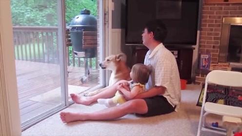 一娃一狗一个爹,绝对逗比三人组,太神经