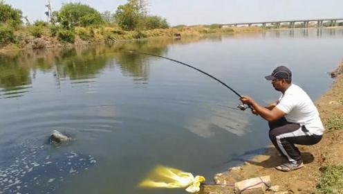 河边钓到一条大鲶鱼,直到把鲶鱼溜累了,才拉上岸