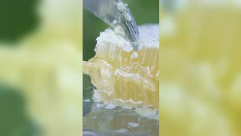 蜂巢蜜的吃法,可以加点柠檬哦!