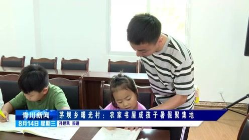 茅坝乡曙光村:农家书屋成孩子暑假聚集地