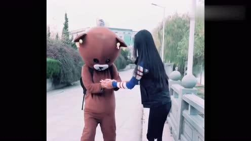 网红熊逛街偶遇小姐姐拍照,他竟这样做,也是没谁了!