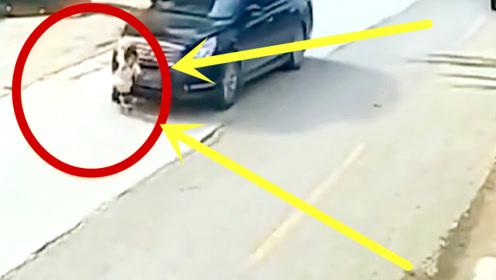 女孩奔跑着过马路,就算你是老司机,也只能含泪撞上去!