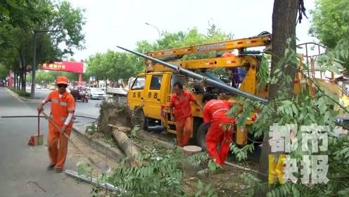 西安725路公交为躲电动车撞树侧翻 6人不同程度受伤