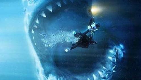 小伙竟然养鲨鱼当宠物玩,最终一行人都难道其口,网友:饱餐一顿