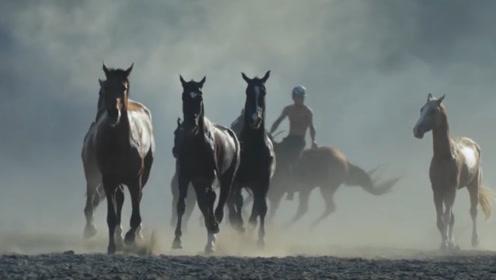 世界上最贵的马,号称来自天堂的马,一匹马堪比10辆法拉利!
