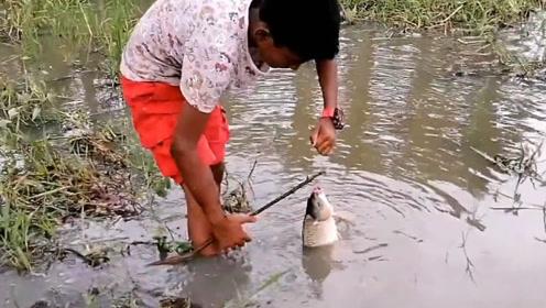 挂上鱼饵岸边一等,水面一有动静那就是有鱼上钩了!